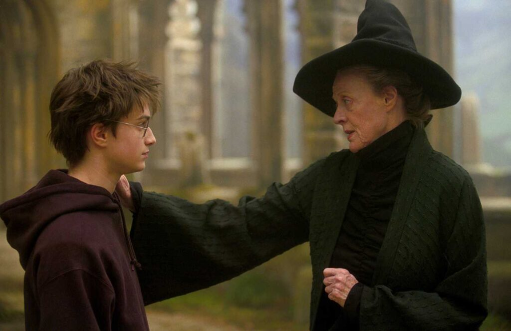 McGonagall With Hand On Harrys Shoulder